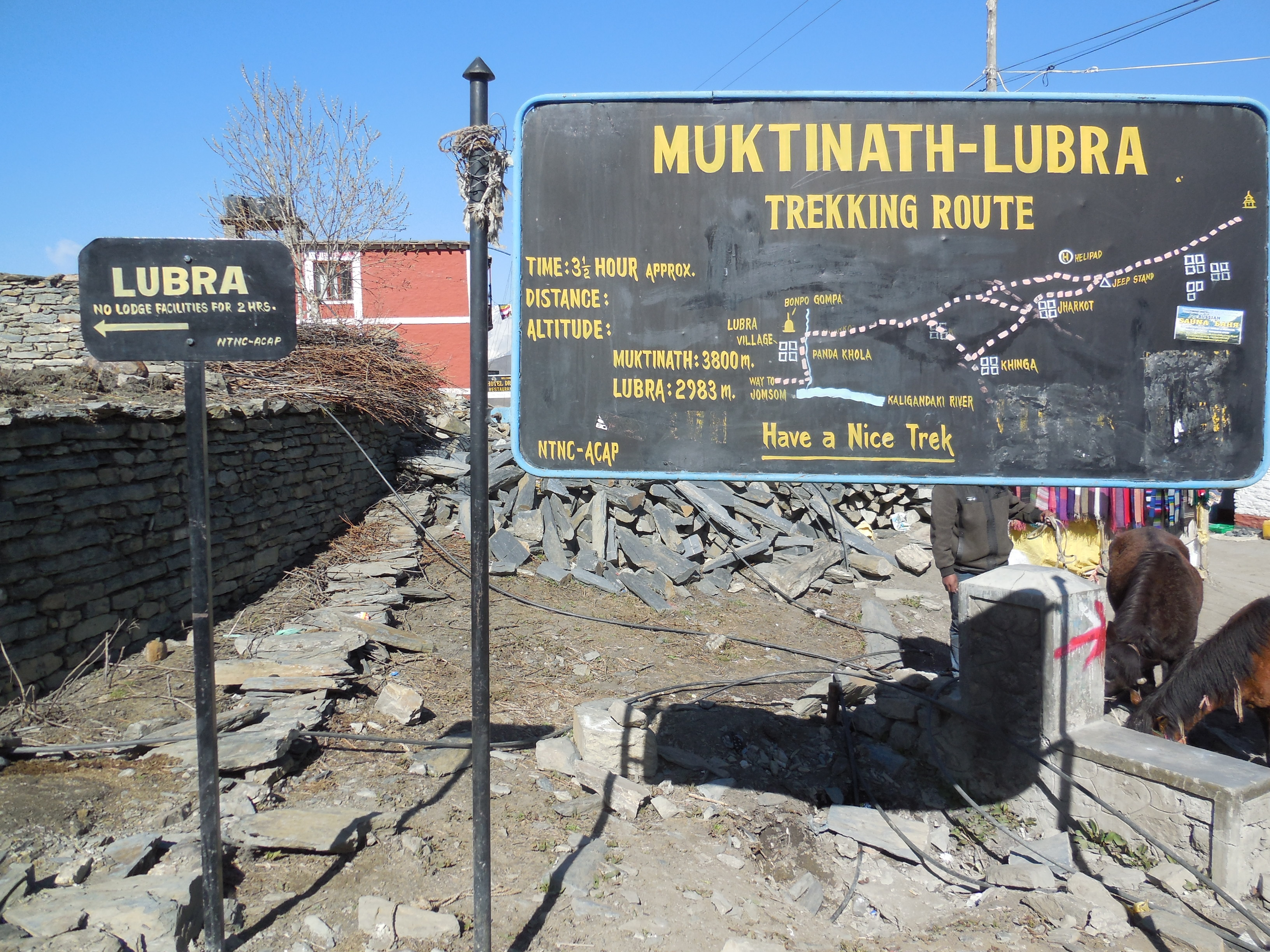 From Muktinath via Lupra to Jomson